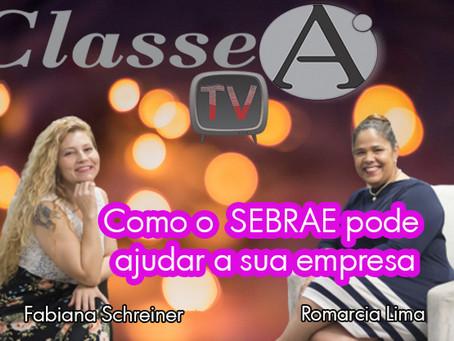 Como o Sebrae pode ajudar a sua empresa por Fabiana Schreiner e Romárcia Lima