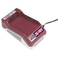 Chargeur 36V-40V