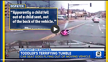toddler falling out of moving car