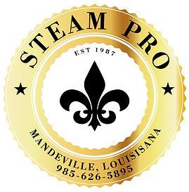 steam pro less white.jpg