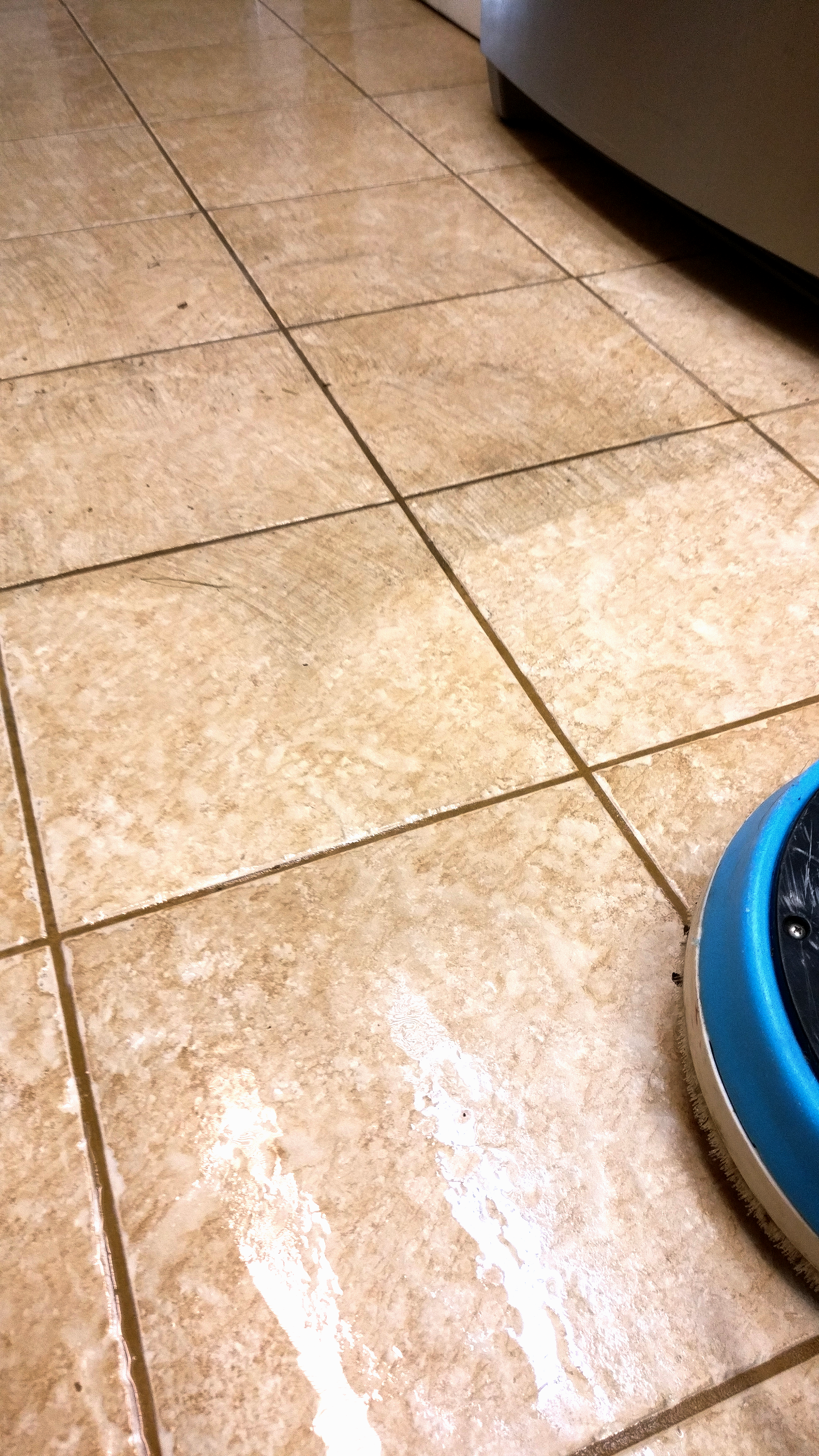 tile hasn't been cleaned in 15 years