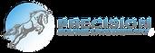 Precision Equine Logo
