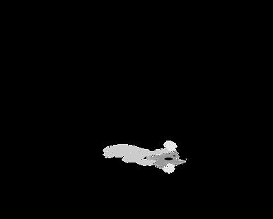 Tree Ninja Logo.png