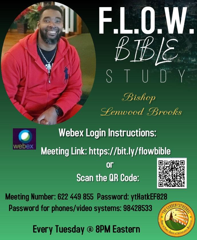 FLOW Bible Study v2.jpg
