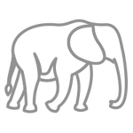icons-whatyouget-elephant.png