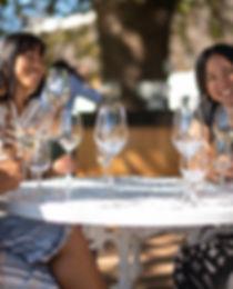 Boschendal Wine Tasting Traveleers Zuid