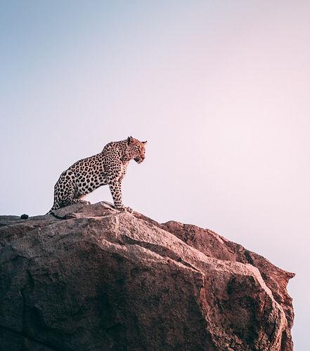 Groepsreis Afrika Traveleers