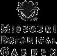 MBG_logo_transparent.png