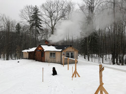Boiling Sap in the Snow
