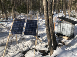 solar power has our new woods up and running
