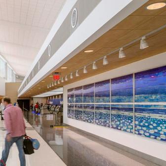 Houston Hobby Airport Southwest Expansion