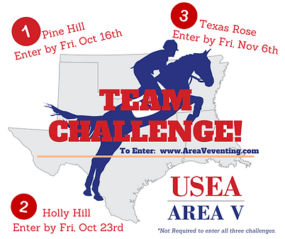 _Fall  2020 Team Challenge!.png