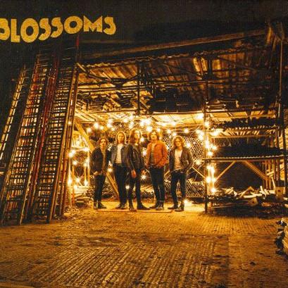 """Clássicos Modernos: """"Blossoms"""", Blossoms"""