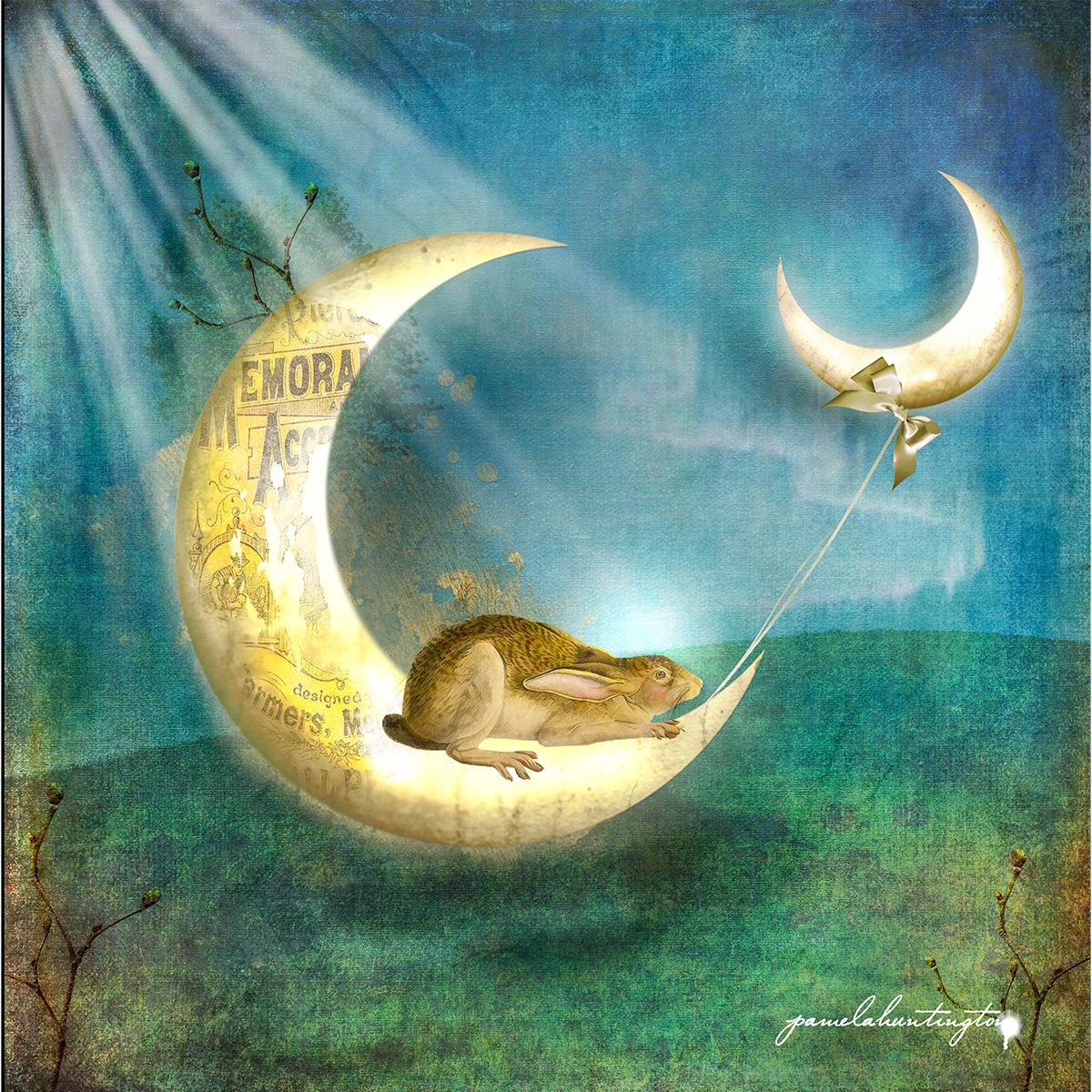 The Moon Rabbit Dreams