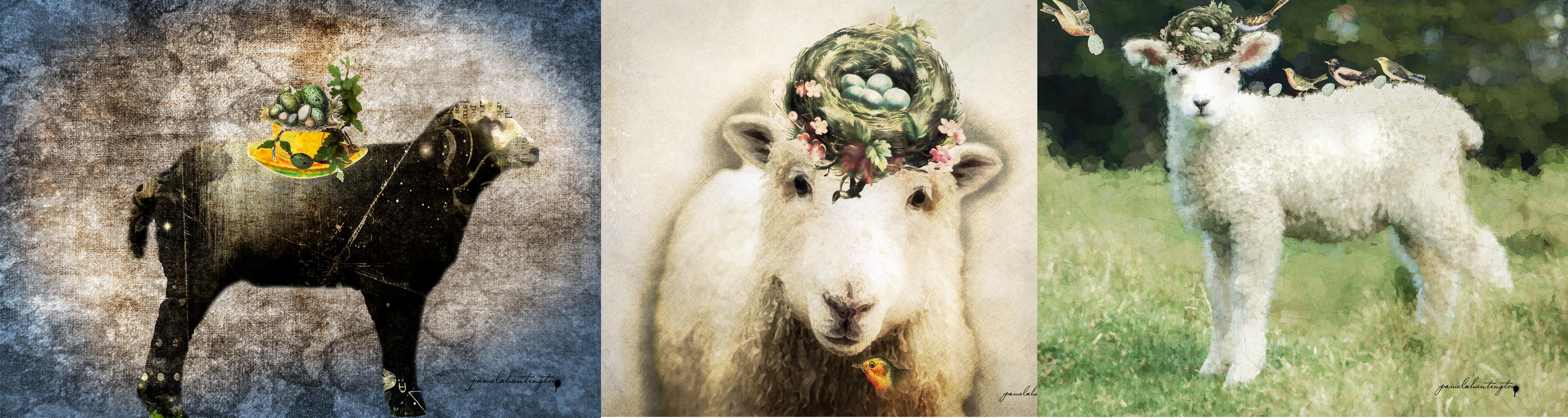 Lamb series