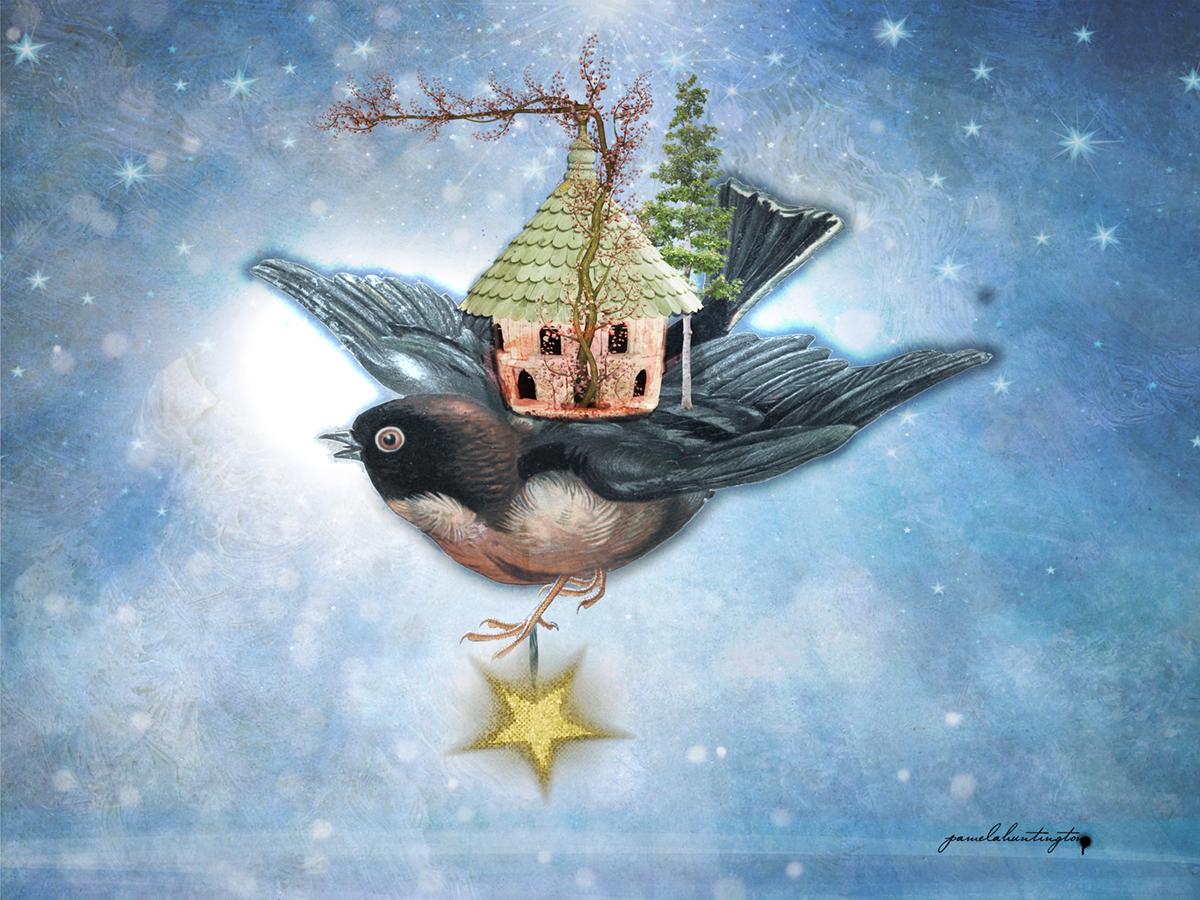 """Bird House'"