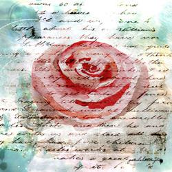 Rose Text