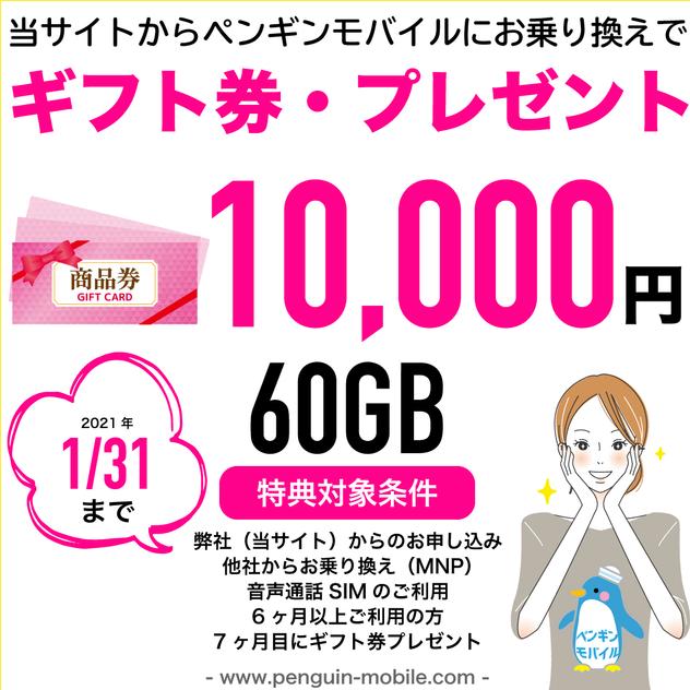 0131ギフト券・プレゼント60GB.png