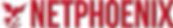 NETFENIX_logo.png