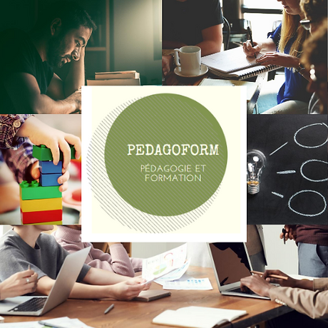 logo PEDAGOFORM.png