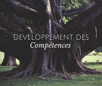 développement.jpg