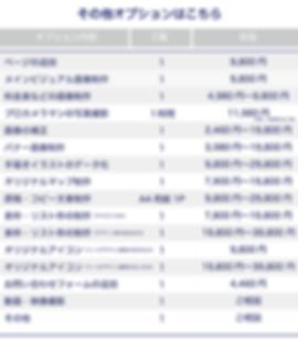ホームページのオプション料金表