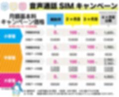 音声通話100円202006.jpg