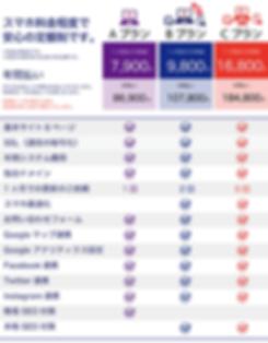 ホームページ料金表.png