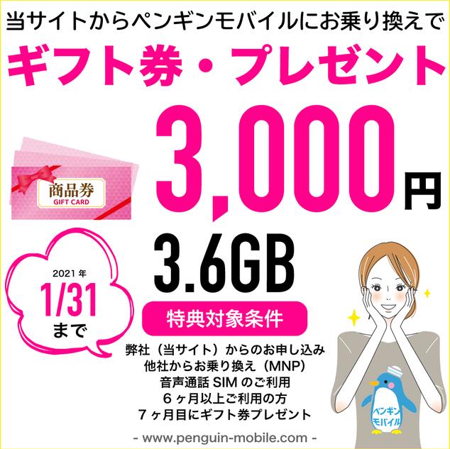 0131ギフト券・プレゼント3.6GB.png