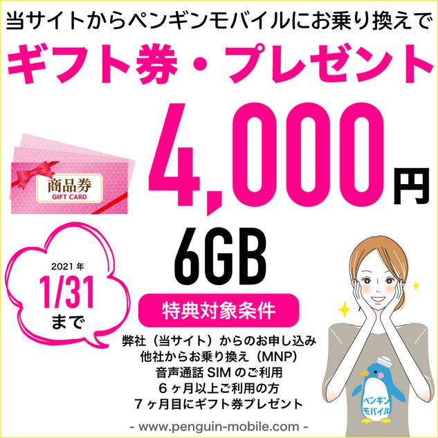 0131ギフト券・プレゼント6GB.png