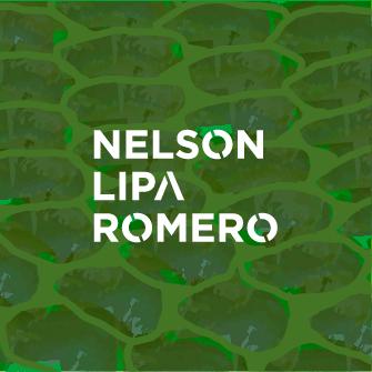 Nelson Lipa