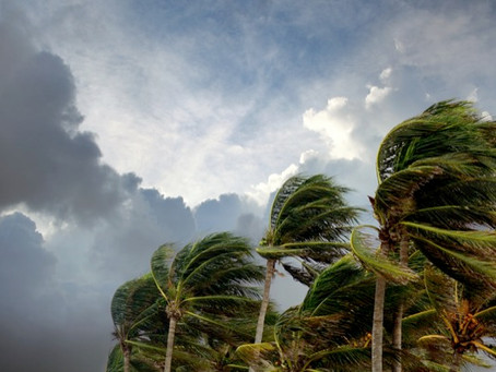 How To Prepare For A Hurricane Or Tropical Storm