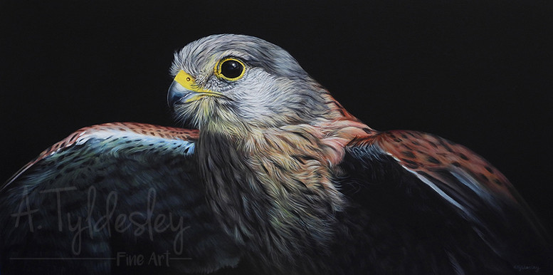 'Wild Wings'- 48cm x 23cm Acrylic & Resin (Available)