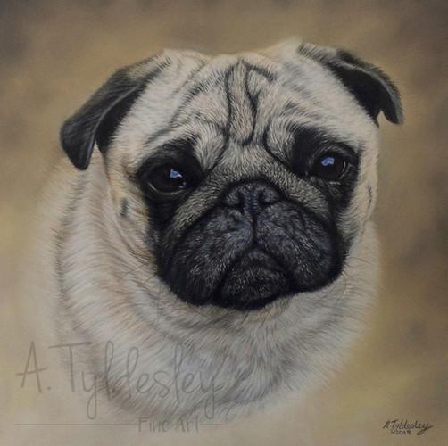 """8"""" x 8"""" Pastel Portrait"""