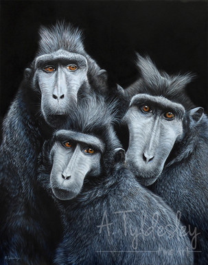'The Three Stooges'- 32cm x 40cm Acrylic & Resin (SOLD)