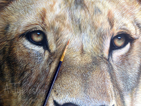 Final preparations underway for the Exhibition of Wildlife Art!