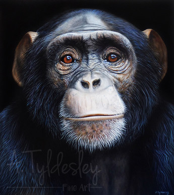 'Chimp Portrait'- Acrylic & Resin (SOLD)