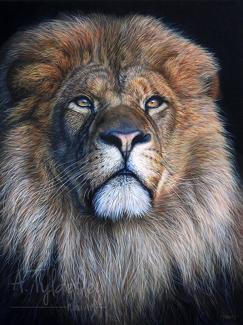 """'Portrait of a King'- Limited Edition Giclee Print 12"""" x 16"""""""