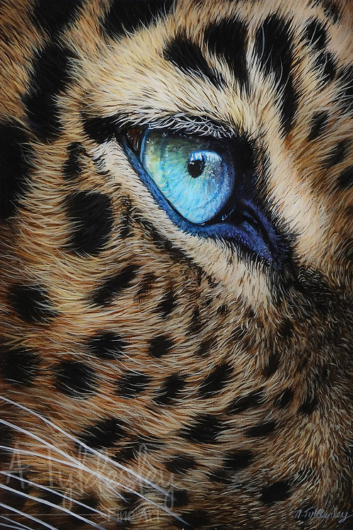 'Leopard Eye' - Limited Edition Giclee Print A4 Size