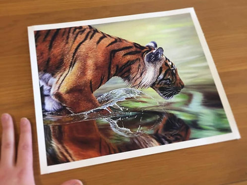 """'Reflected Glory' -Limited Edition Print 10"""" x 12"""""""