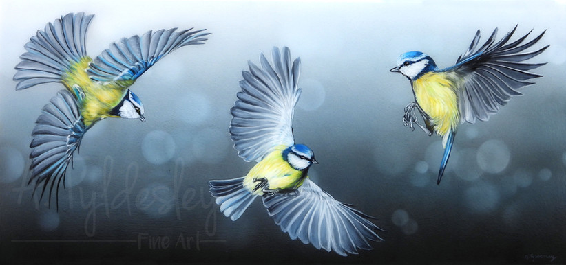 'Flying Colours' - 50cm x 23cm Acrylic & Resin (Available)