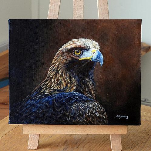 'Golden Eagle Portrait'
