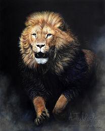 running lion final c2.jpg
