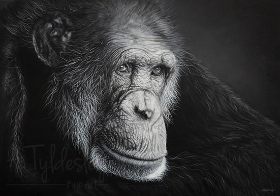 'Reverie'- 59cm x 42cm Acrylic on Canvas (SOLD)