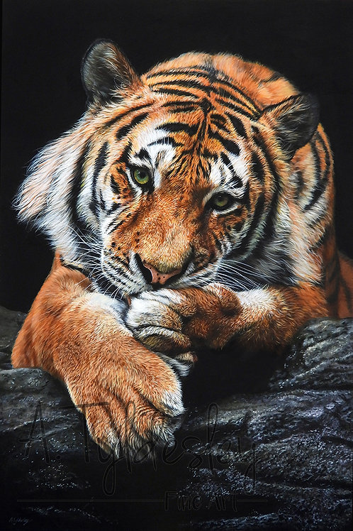 """'Patience'- Limited Edition Giclee Print 12"""" x 18"""""""