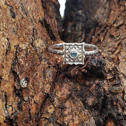 Perks ring of Mana reserved for Kim