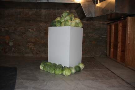 """""""Especially Cabbages,"""" For Pierre Bourdieu (What to make of the gold ones?), 2017."""