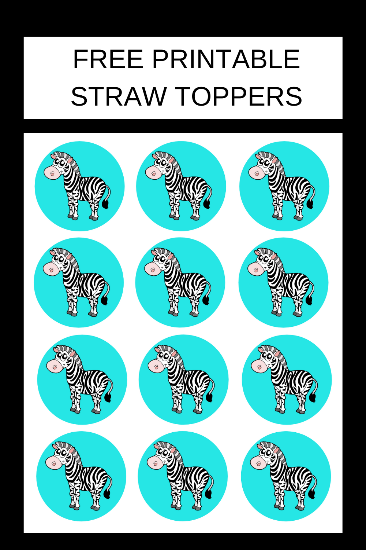 1st birthday zebra birthday party ideas