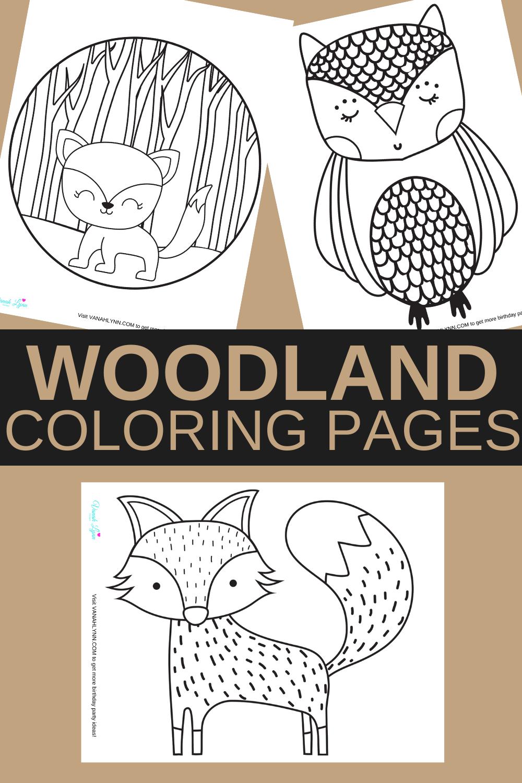 1st birthday woodland animal birthday party ideas