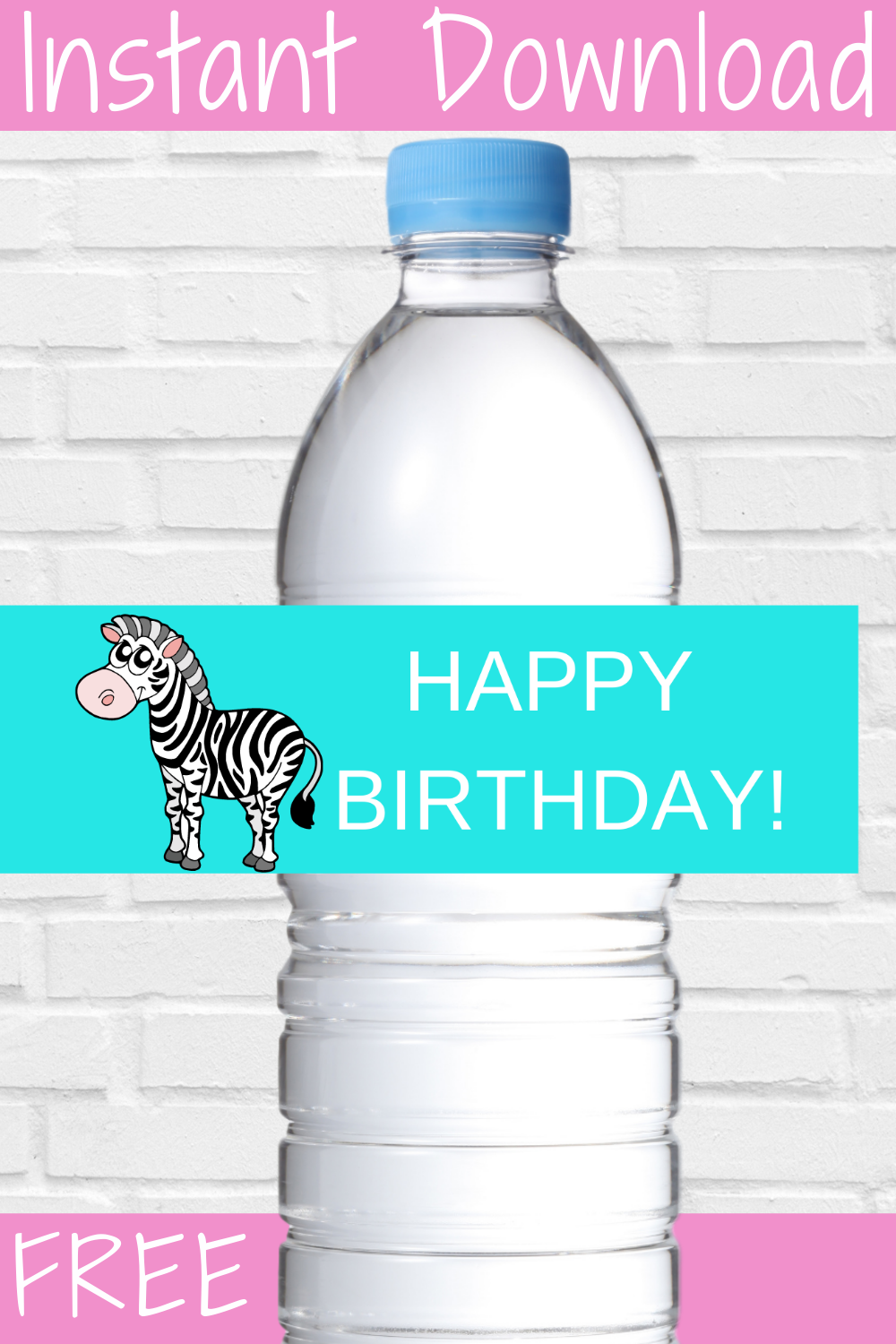 free download zebra birthday party decoration ideas